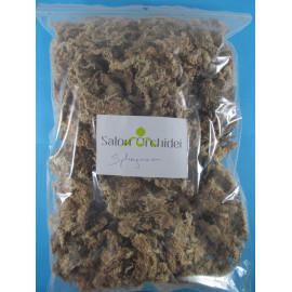 Sphagnum (peat moss) 100 g