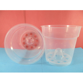 Transparent pot with 13 cm...