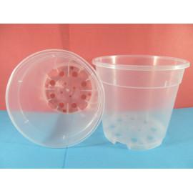 Transparent pot with 15 cm...